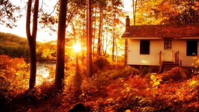 Photo of 5 consejos de mantenimiento en el otoño para prepararse para el invierno