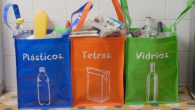 Photo of 5 maneras de reemplazar los productos desechables para ahorrar dinero y reducir el desperdicio