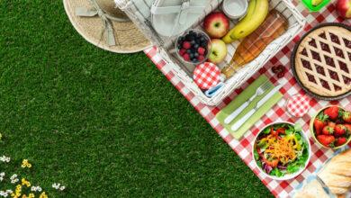 Photo of 5 maneras fáciles de hacer un picnic de empresa ecológica