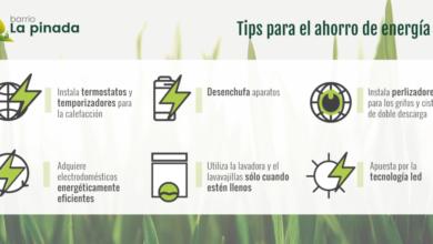 Photo of 8 maneras de ayudar a los niños a conservar la energía en el verano