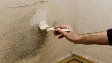 Photo of Cómo mantener la humedad de su casa