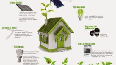 Photo of ¿Cómo puedo crear un hogar ecológico?