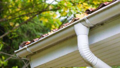 Photo of Consejos para el mantenimiento del otoño dentro y fuera de su casa