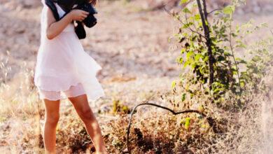 Photo of ¿Cuáles son los mejores documentales ecológicos?