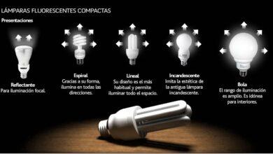 Photo of ¿Por qué ya no puedo comprar bombillas incandescentes?